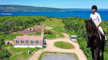 Black Rock Horse Stable - Pet Hotel – Farmhouse at Bras d'Or Lake for sale on Cape Breton Island, Nova Scotia, Canada